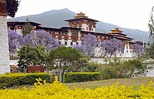 The Most Beautiful Punakha Dzong