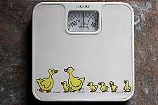 Weighing Scale With Ducks